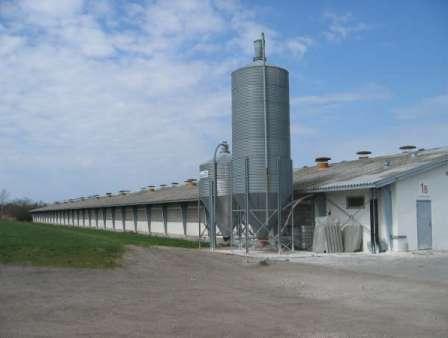 http://www.robertcasanova.fr/SURVIVRE/IMAGES/ENBATTERIE/usine-a-poulets.jpg